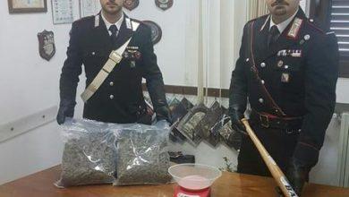 Photo of Rionero,scoperta una centrale di spaccio Trovato circa un chilo di marijuana, 2 agli arresti domiciliari