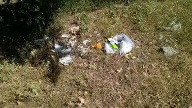 Photo of SENISE: L'abitudine incivile di abbandonare la spazzatura per strada