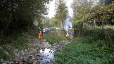 Photo of SENISE: forestazione incontro con i cittadini e le parti sociali 15 Giugno