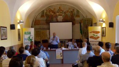Photo of BRAIA: CONSERVAZIONE BIODIVERSITÀ VEGETALE, AVVIATI 2 PROGETTI