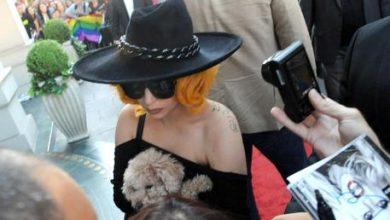 Photo of Lady Gaga piange di gioia per il ritrovamento dei cani