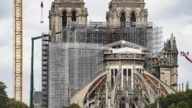 Photo of Notre-Dame: mille querce per ricostruire la guglia